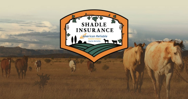 shaldeinsurance_flex